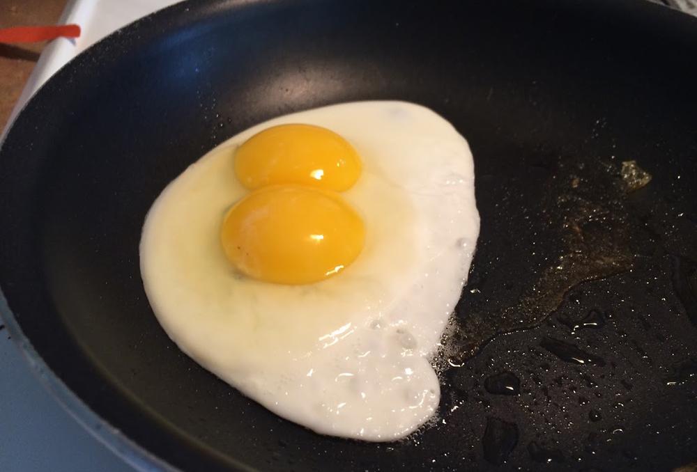 BLOG_egg