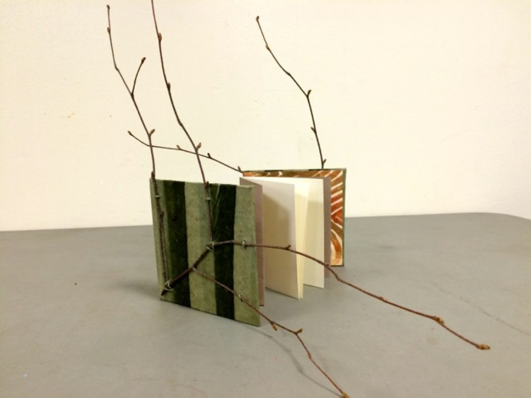 """""""Branching Out"""" Pamphlet/Concertina"""