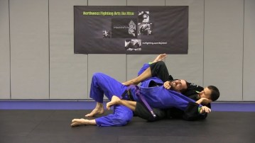 Take the Back Jiu jitsu style