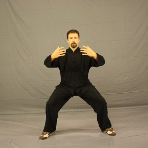 Practicing the Forms of Tai Chi