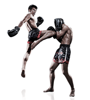 Muay Thai and Kickboxing? North