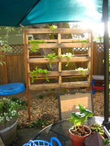 Project Pallet Planter Nwgreengirl
