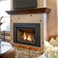 Kozy Heat Chaska 34L Gas Fireplace Insert - NW Natural ...