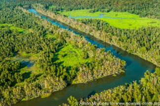 USA: Louisiana, Aerial photo of Atchafalaya Basin area, manmade canal off Intracoastal Waterway west of Morgan City, its sharp right-angle turn and straight lines disrupt natural flow of the basin's waterways