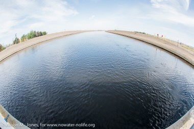 CA, Central Valley, Delta Mendota Canal, part of State Water Project