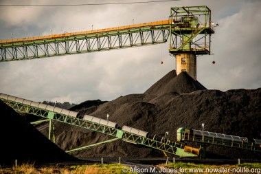 USA: Huntington, West Virginia, storing coal