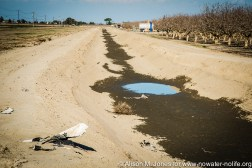 USA: California, San Joaquin River Valley, empty irrigation canal for pistachio orchard