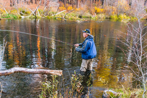 Fly-fisherman fishing in the Metolius River