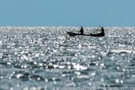 East AFrica: Uganda, Queen Elizabeth National Park, Kasinga Channel Boat Ride