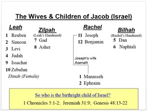 The first two pages are some graphics that help teach story of birth tribes israel in genesis and about birthright also order  names nw seminary share rh nwseminaryshare weebly