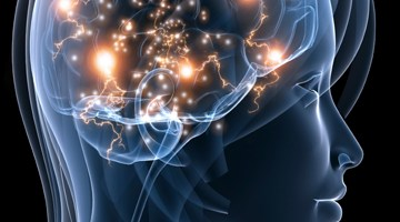 Digital illustration of woman's brain