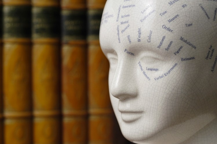 Law books and a phrenology head