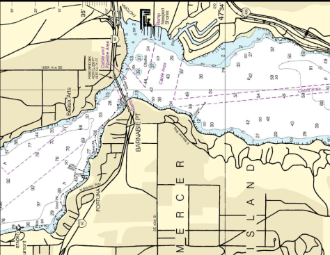 WDFW netters found the walleye off Enatai Beach, which is just south of the east end of the I-90 bridges between Mercer Island and Bellevue. It either represents a likely spawning area, or is close to lake accesses from which the fish were dumped. (NOAA)