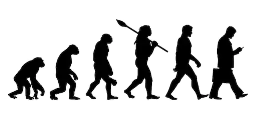 The Truth and Beauty of Evolution