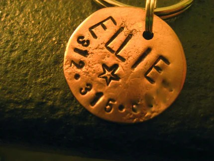 Small Circle Pet ID tag in Copper