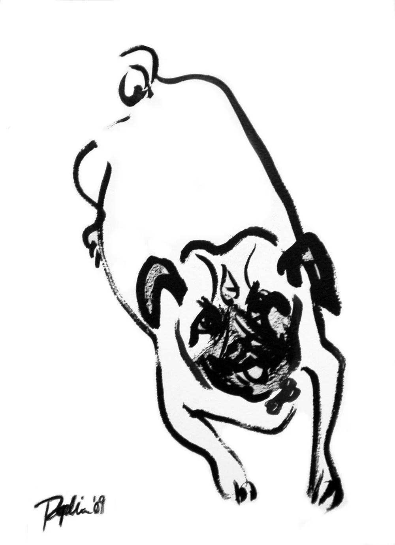 Sumi Ink Sketch of Dog