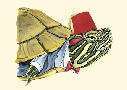 Painted Turtle print