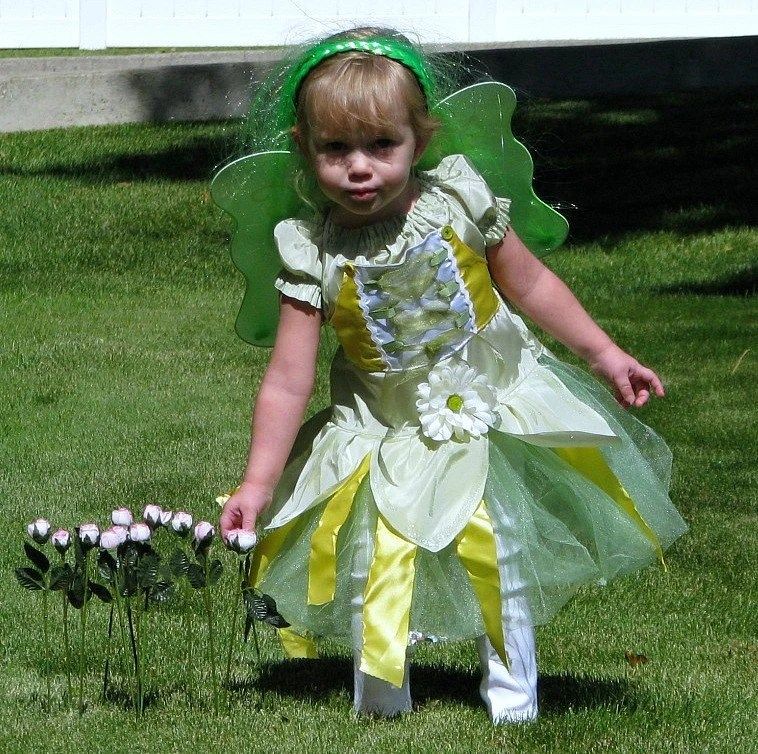 Green Tink Fairie Princess Costume