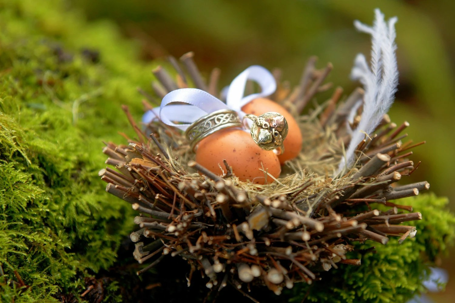 Ring Bearer Birds Nest With Tan Eggs