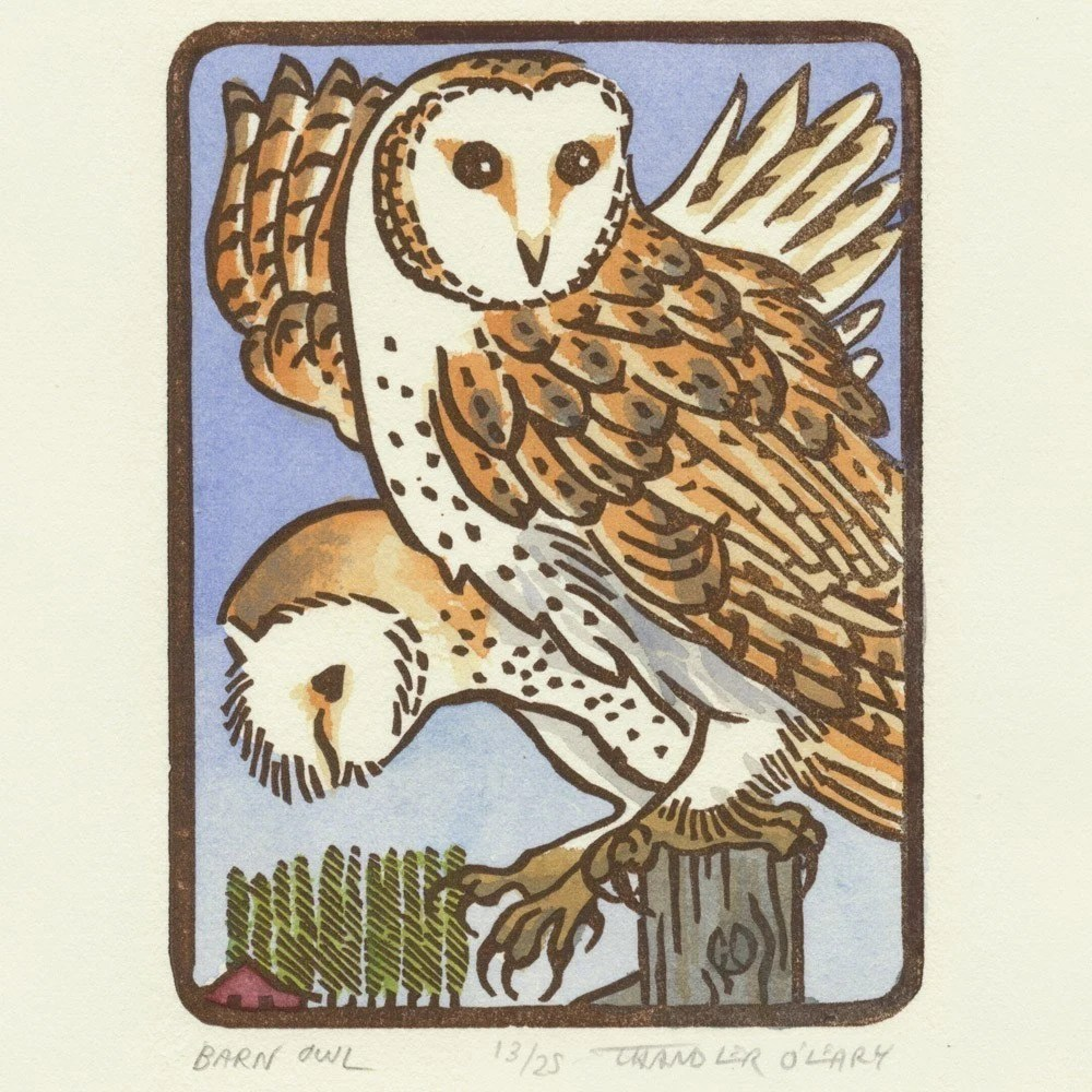 BARN OWL original linocut hand colored bird block print