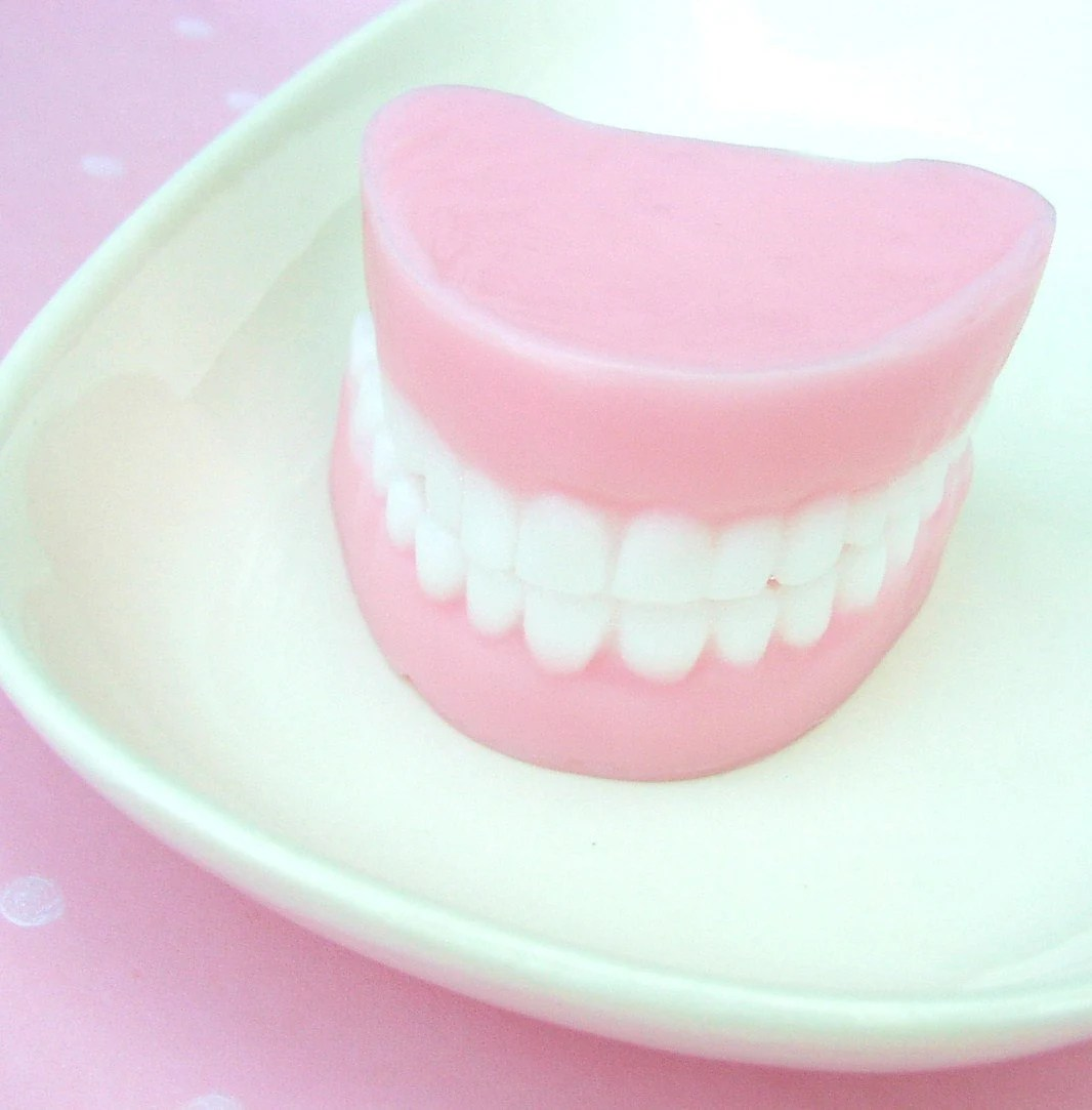 Funny Denture Soaps - NEW