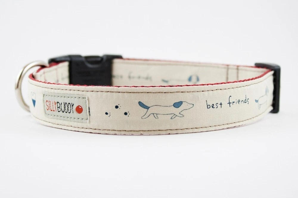 Friendly Dachshund Dog Collar in Creamy Blue