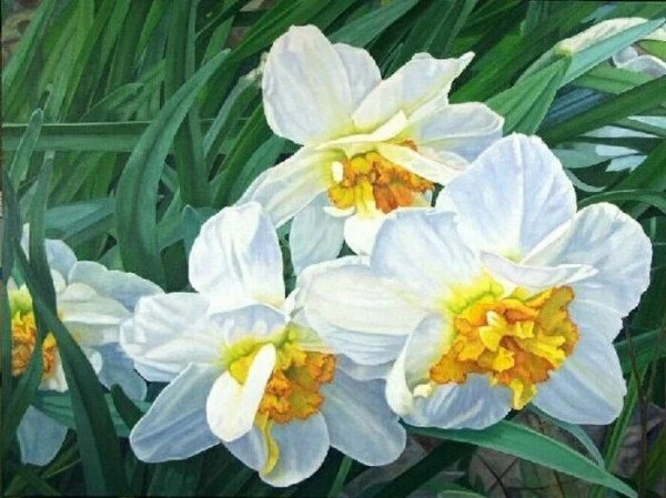 Narcissus - Giclee print on Canvas of OIL PAINTING 15x20