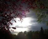 Spring Rainfall at Sunset