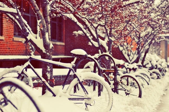 Bicycles in Snow - 8x12 Original Signed Fine Art Photograph