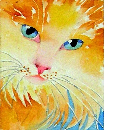 Cat Art Print Long Hair White Orange