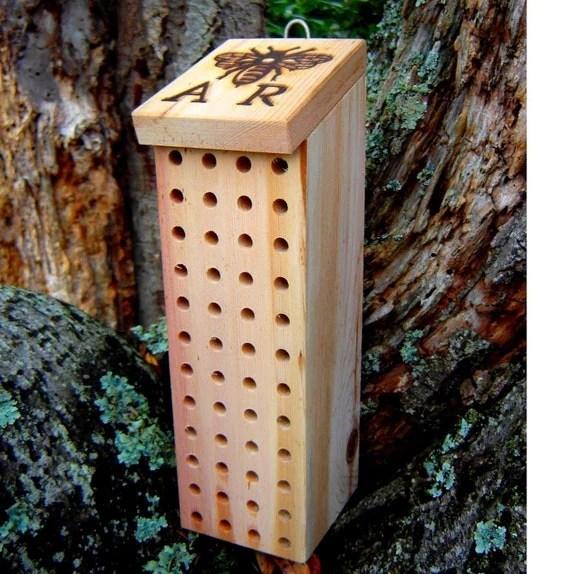 mason bee box