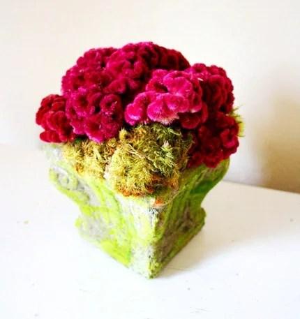 textured garden mound
