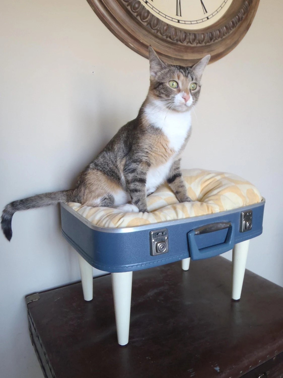 Luvable Luggage Pet Bed - Yellow and Blue Retro Polka Dot