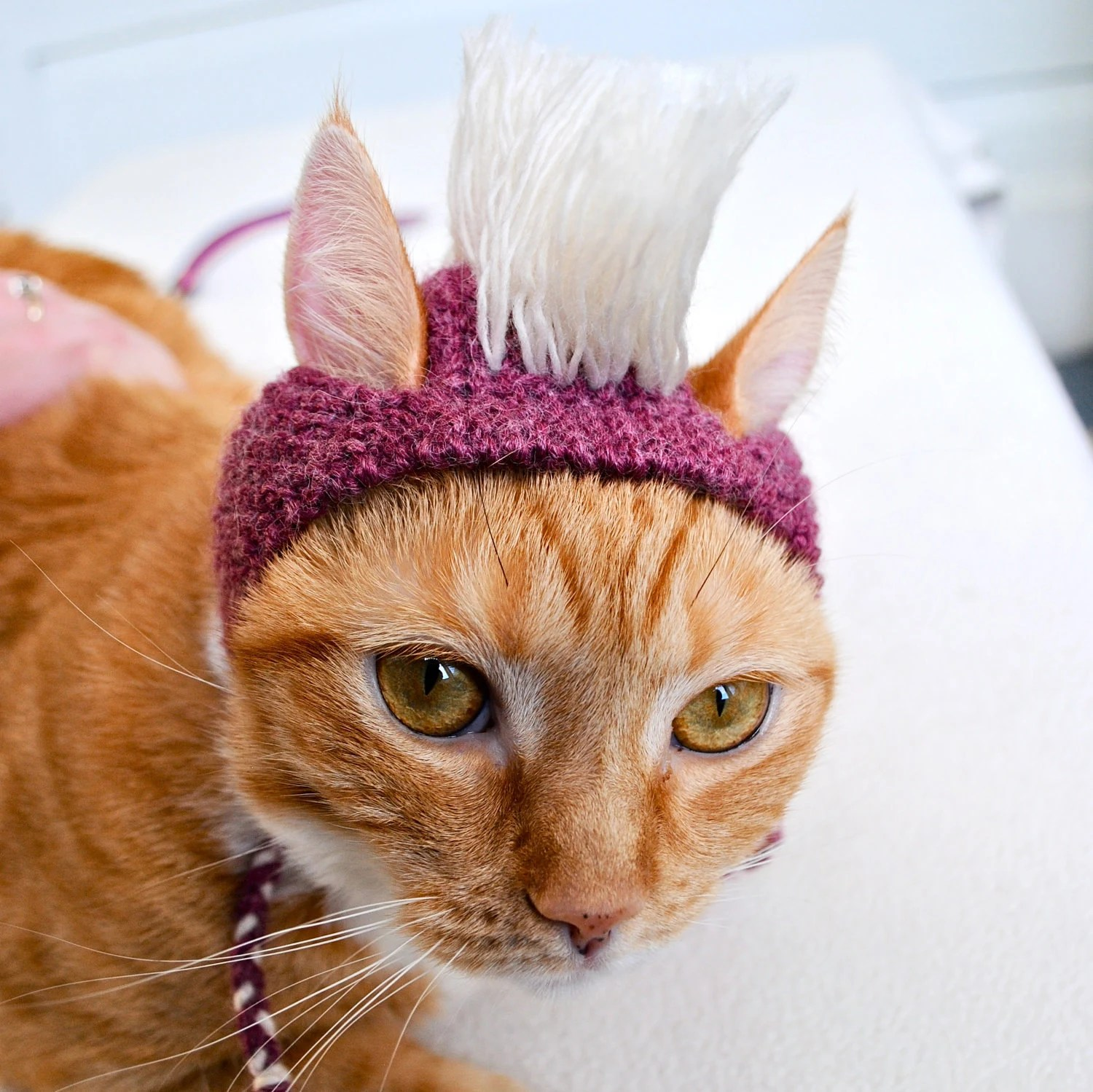 Mohawk Cat Hat - Pink and White