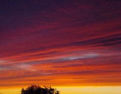 flw-sunset-3