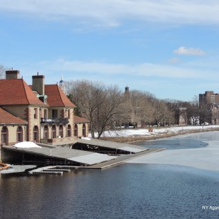 Puente Harvard1