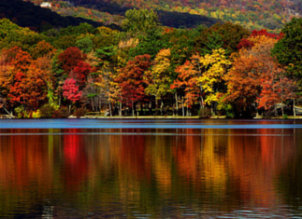 bear-mtn-fall-leaves