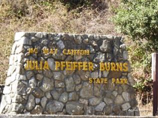 JuliaPfeiffer