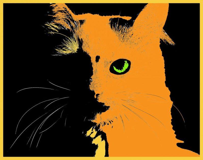 化粧品業界・日用品業界の優良企業を語る猫