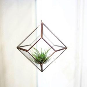 TRUNCADA-decoracion-figuras-geometricas-rombo-colgante-plantas-terrario-decoracion-natural-plantas