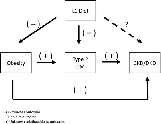 Are low‐carbohydrate diets safe in diabetic and