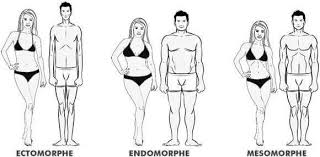 connaitre son morphotype est important pour adapter son alimentation et ses exercices sportifs
