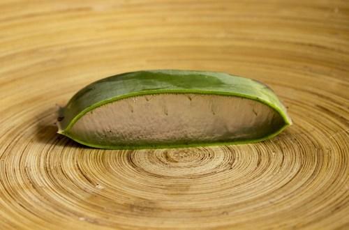 les bienfaits de l'aloe vera sur la peau et les cheveux