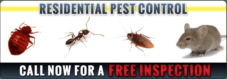 Pest Control Staten Island  Pest Exterminator Staten Island