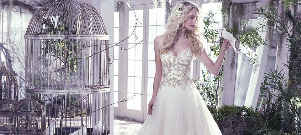 Wedding Gowns New York: New York Bride & Groom Of Columbia