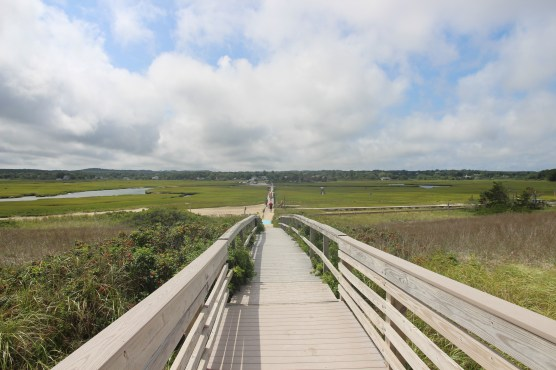 walks in cape cod