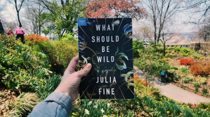 What Should Be Wild by Julia Fine