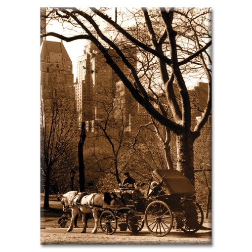 Carriage Ride in Central Park New York Photo Magnet