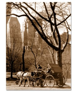 Carriage Ride Central Park Art Print MP-1005