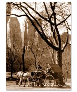 Carriage Ride Central Park Art Print MP-1005